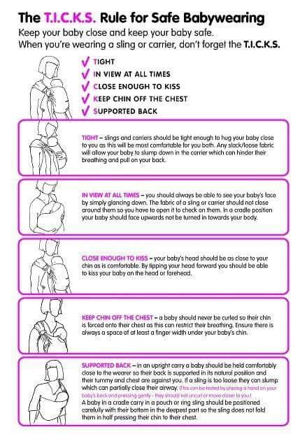 ticks guide